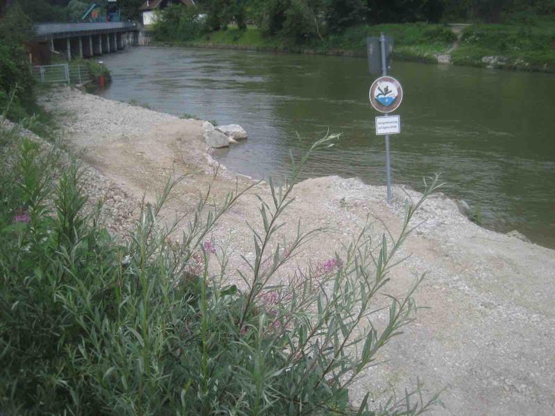 Ökologisches Fischmonitoring an der Wehranlage Baierbrunn