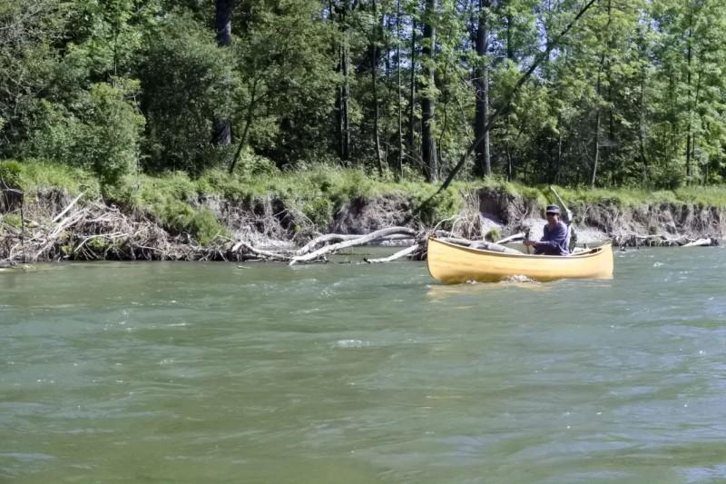 Nationalpark Donauauen - Fluch oder Segen für den Kanusport?